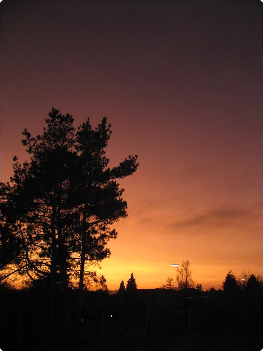 solnedgang1.jpg