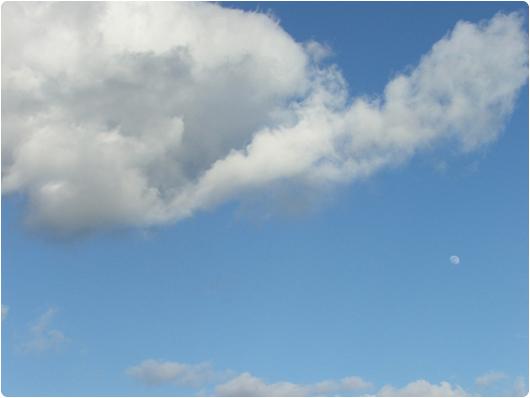 maanen2-1.jpg