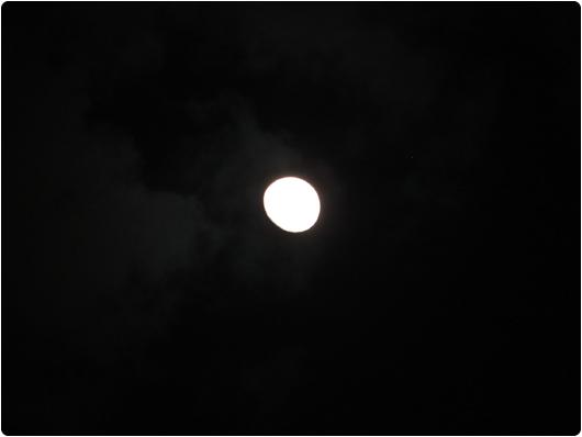 natten_kommer.jpg