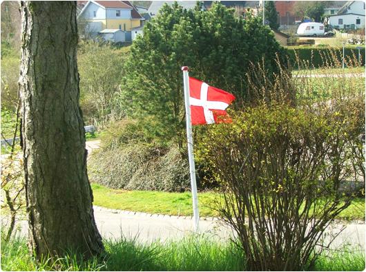 flagning.jpg