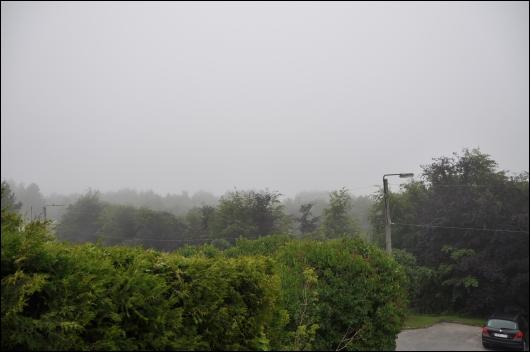 Diset og grå juni morgen