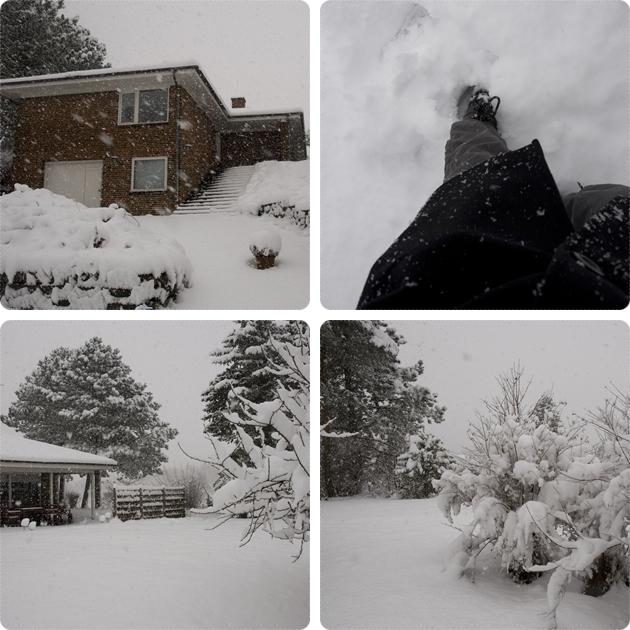 Meget sne