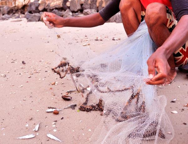 En fiskaer i Thailand